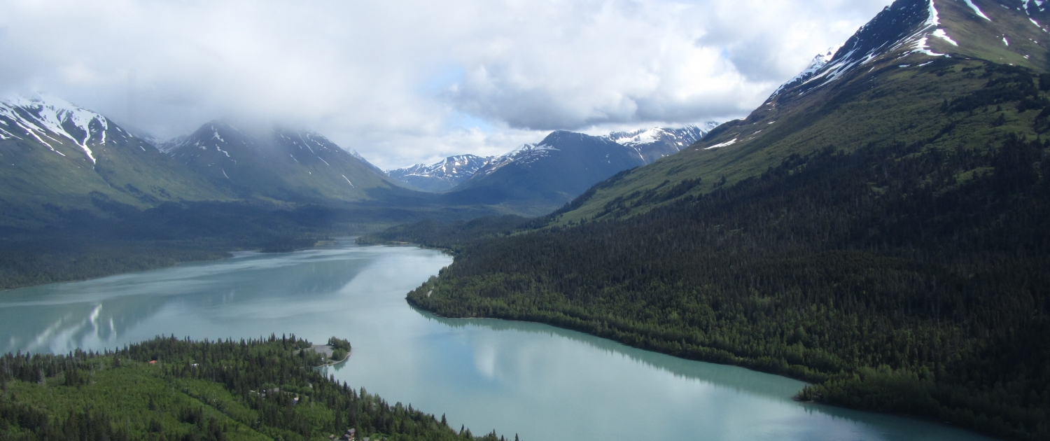 hiking trails above haines alaska
