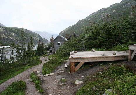 Chilkoot trail with green trees and grass